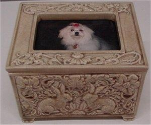 "Photo Frame Box w/Lid Rabbit Design 4.75x6.75"""