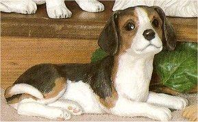 """Beagle 4.5""""t"""