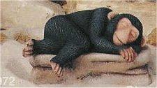 """Sm Monkey Shelf Sleeper 5.5""""L"""