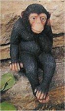 """Sm. Thinking Shelf Monkey 5""""T"""