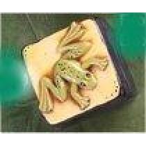 """CPI Frog Box 4x4x3"""""""