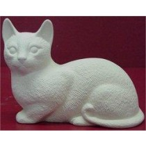 "Shorthaired Cat 5.5""length"
