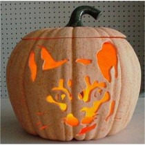 "Carved Cat Pumpkin  9""t"